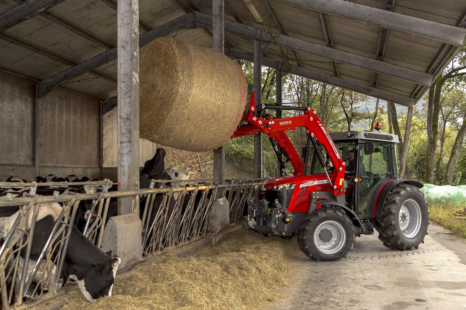 Machine AGCO - Massey ferguson donnant de la paille à des vaches